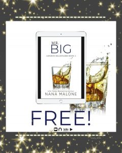 FREEBIE!!! Mr. Big by Nana Malone