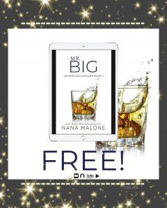 FREEBIE!!! Mr. Big by Nana Malone